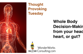 Whole Body Decision Making by WonderWorks Consulting